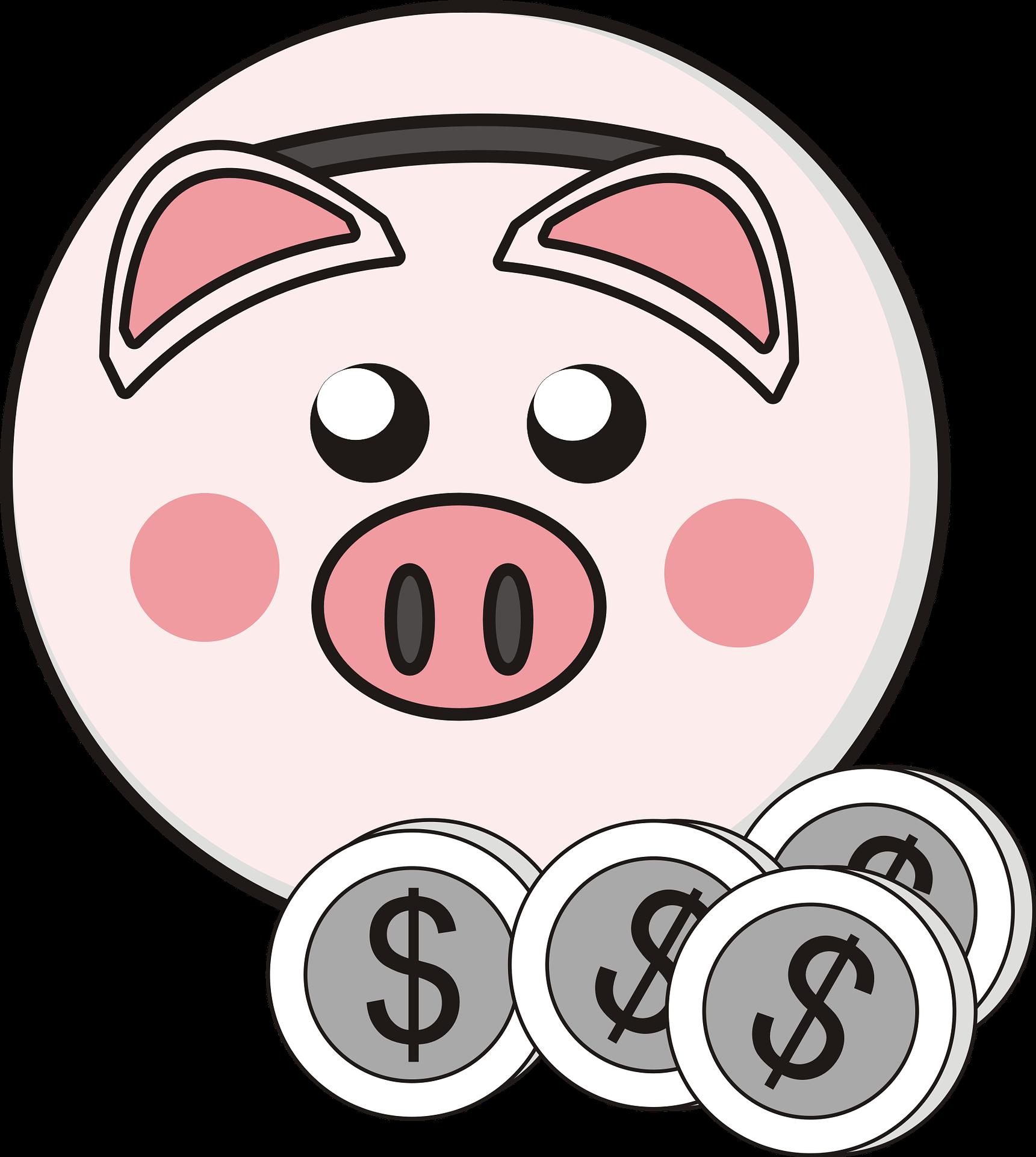 adoc veneto cultura finanziaria